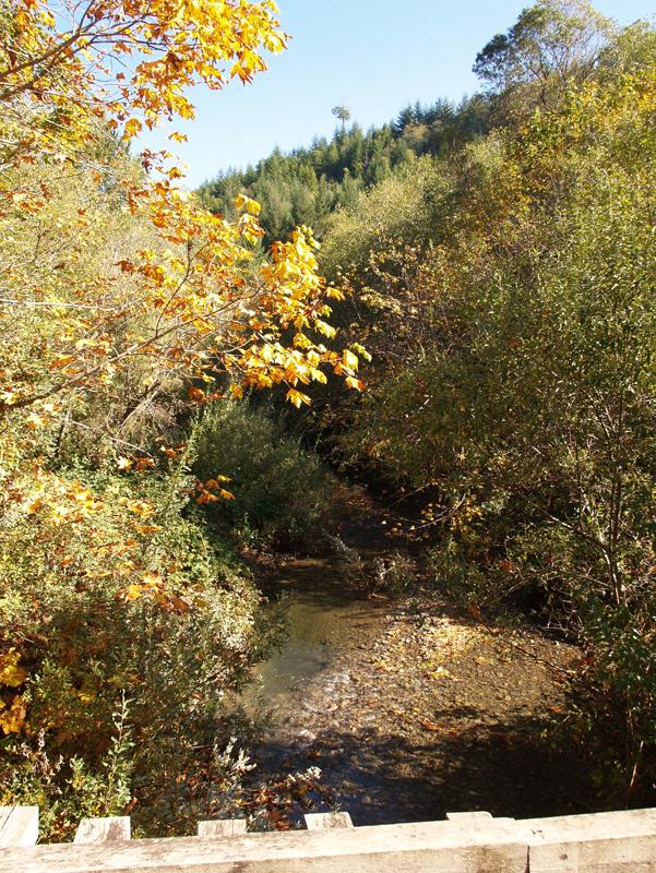 ah-pah-creek6