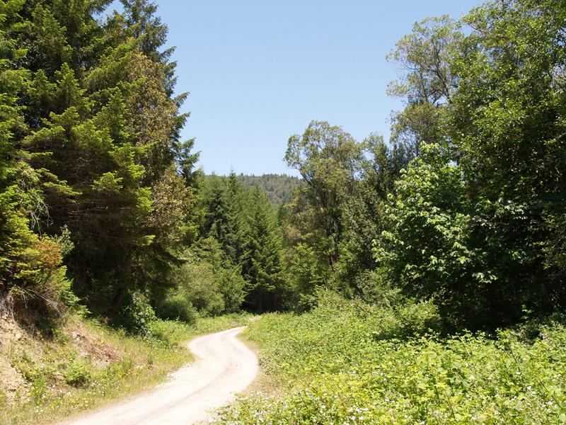 road-to-blue-creek-ah-pah
